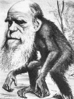 Darwin stamt af van aap